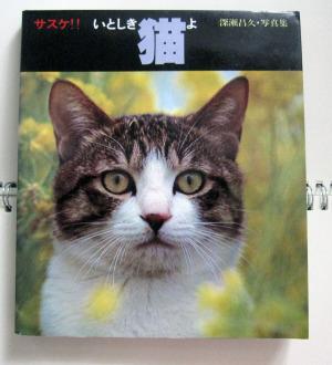 「サスケ!! いとしき猫よ」